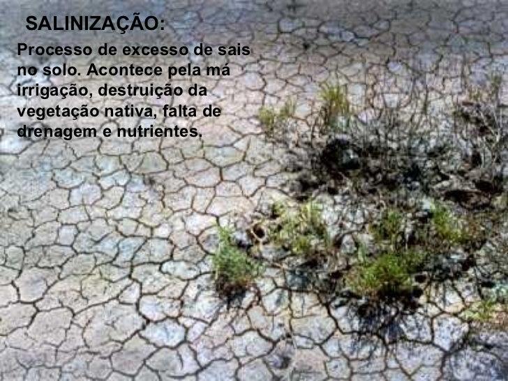 MELHORANDO AQUALIDADE DO SOLO: