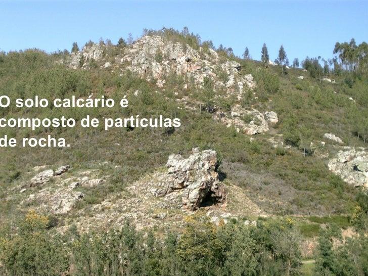 RELEVO:          O solo é a superfície da terra,          cujo relevo pode ser de          planaltos, planícies, montanhas...
