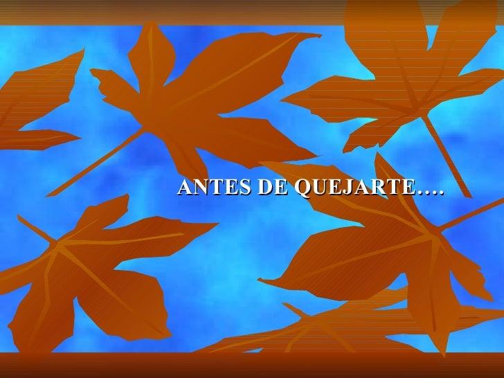 ANTES DE QUEJARTE….