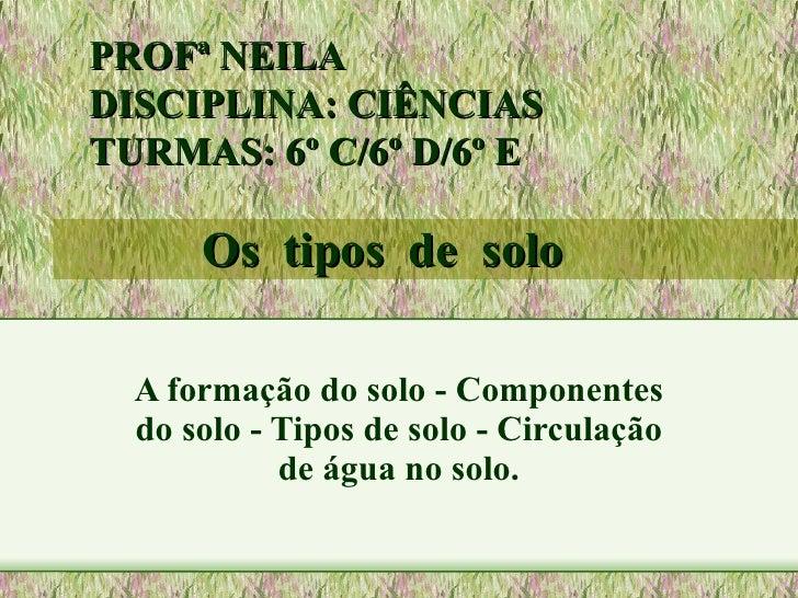 Os  tipos  de  solo A formação do solo - Componentes do solo - Tipos de solo - Circulação de água no solo. PROFª NEILA  DI...