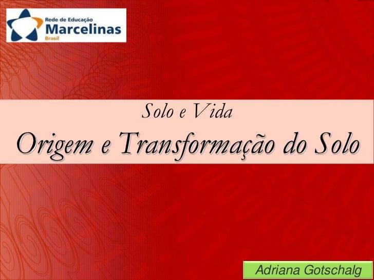 Solo e VidaOrigem e Transformação do Solo                         Adriana Gotschalg