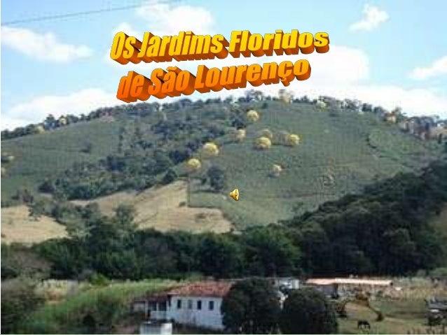 """Trilha Sonora :Tadeu Franco """" Arrumação """""""