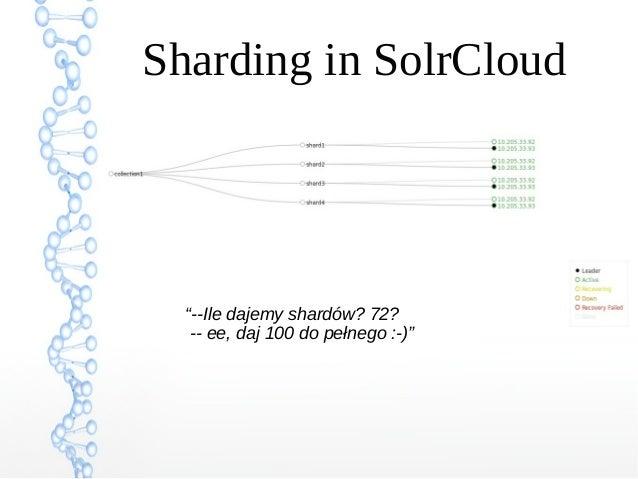 """Sharding in SolrCloud """"--Ile dajemy shardów? 72? -- ee, daj 100 do pełnego :-)"""""""