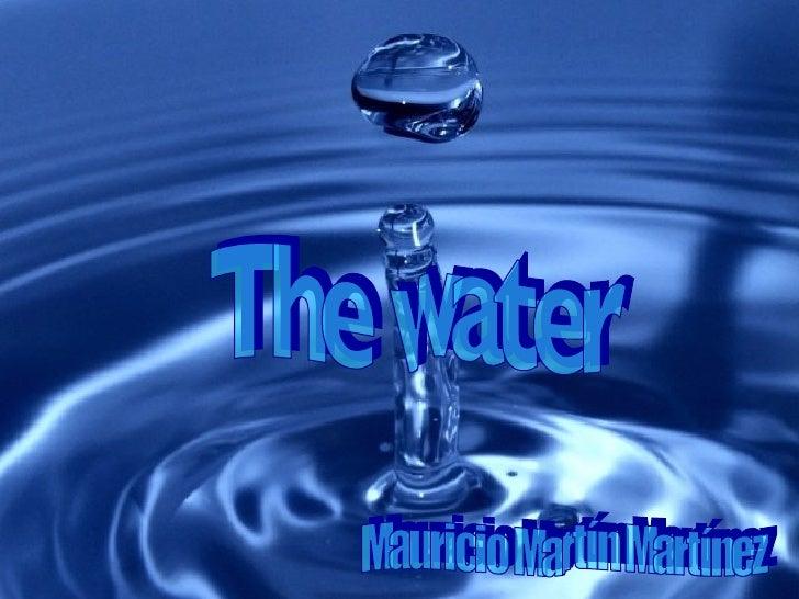 The water Mauricio Martín Martínez