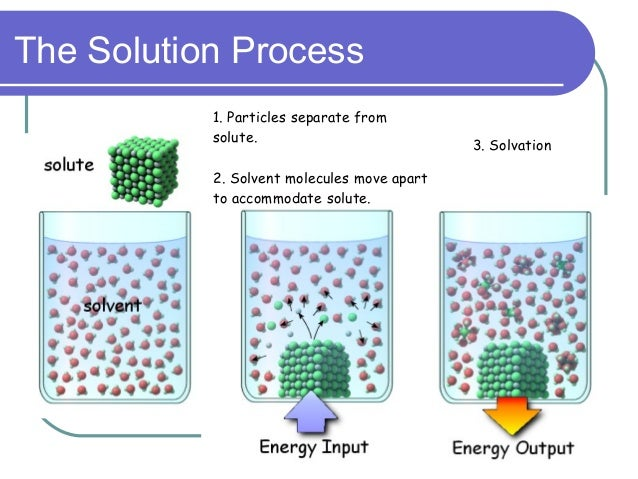 what is a solute molecule