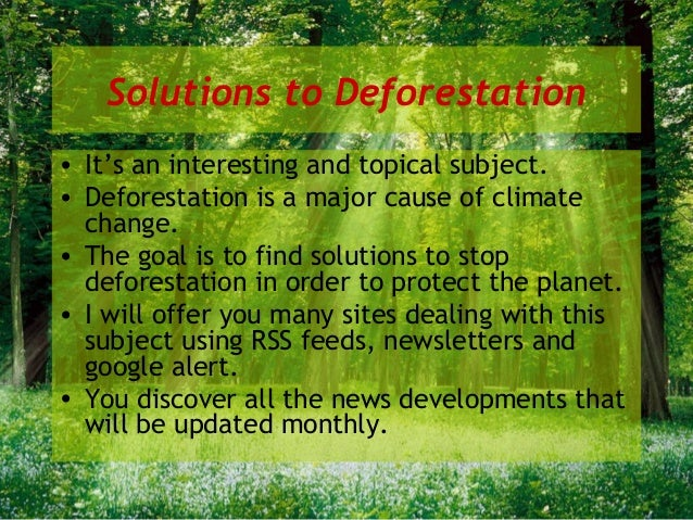 deforestation solutions essays Check out our top free essays on cause and solution deforestation essay to help you write your own essay.