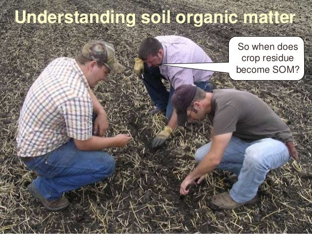 Understanding soil organic matter So when does crop residue become SOM?