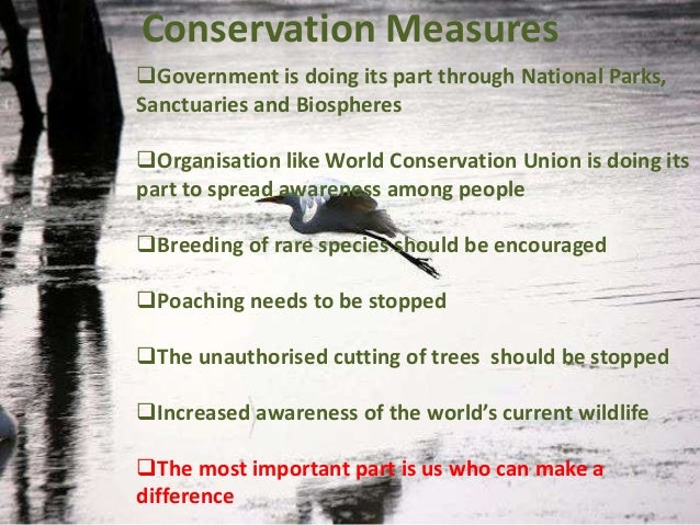 measures to protect wildlife