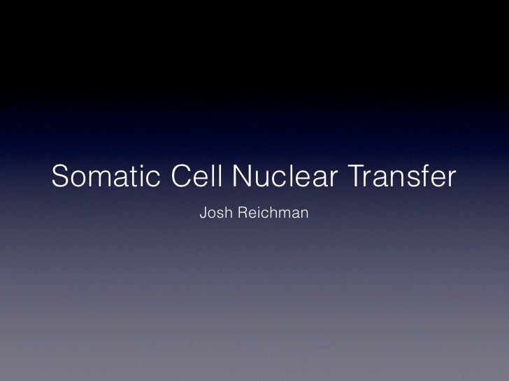 somatic cell nuclear transfer essay How it is done possible benefits  a pro-life senator has suggested the term somatic cell nuclear transfer to replace  related essay on this.