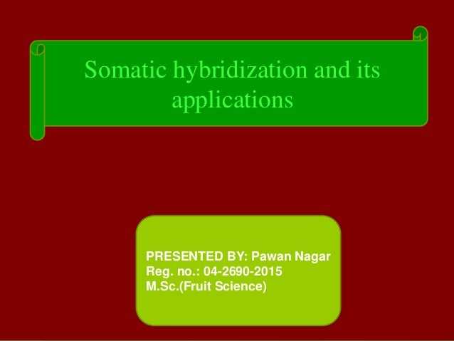 Somatic hybridization and its applications PRESENTED BY: Pawan Nagar Reg. no.: 04-2690-2015 M.Sc.(Fruit Science)