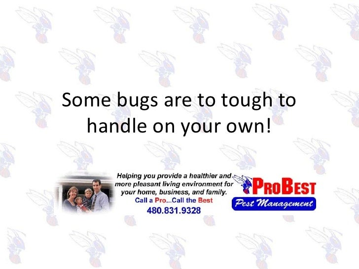 Some bugs are to tough to handle on your own!<br />
