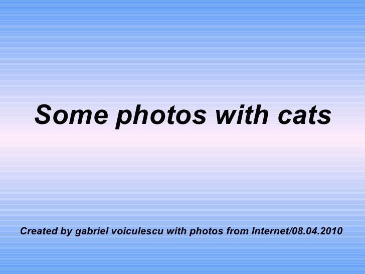 Some photos with cats Created by gabriel voiculescu with photos from Internet/08.04.2010