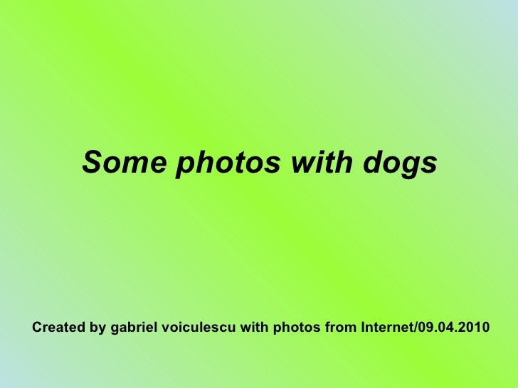 Some photos with dogs Created by gabriel voiculescu with photos from Internet/09.04.2010