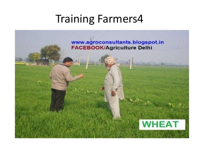 Training Farmers4