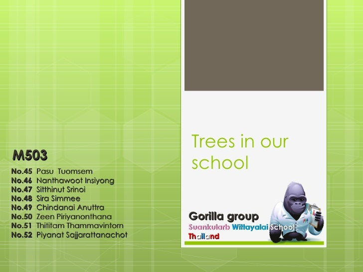 Trees in our school Gorilla group Suankularb   Wittayalai   School Th a il a nd No.45   Pasu  Tuomsem  No.46  Nanthawoot I...