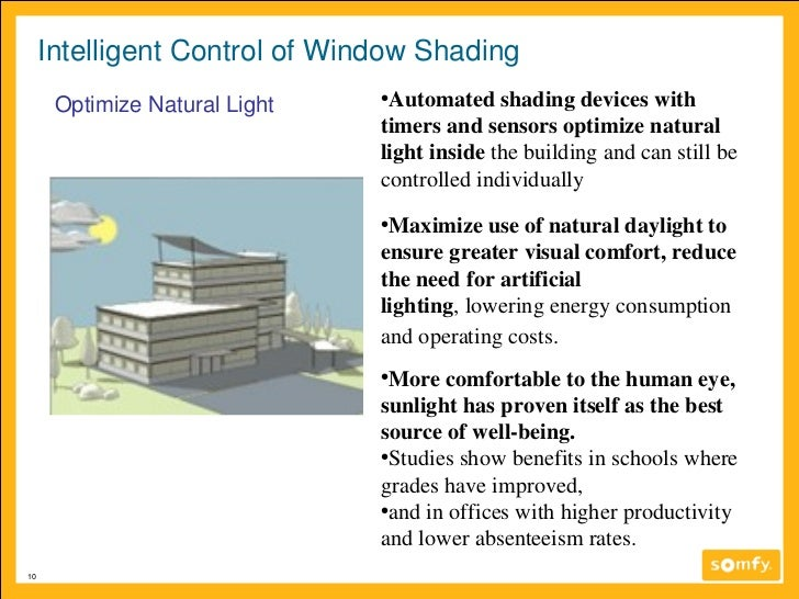 Benefits Of Natural Lighting In Schools