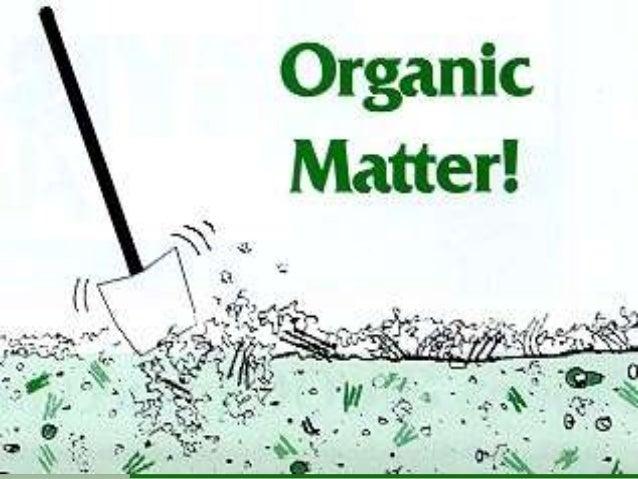 Dynamics of soil Organic matter          Historical Development1. Initial Period: Second half of 18th centuryand beginning...