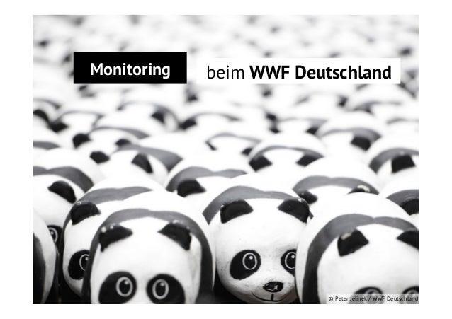 Relevanz vor Reichweite WWF Deutschland Monitoring beim  © Peter Jelinek / WWF Deutschland