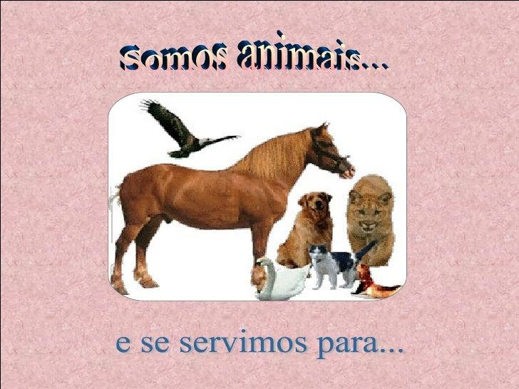 Somos animais... e se servimos para...