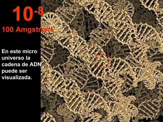 En este micro universo la cadena de ADN puede ser visualizada. 10-8 100 Amgstrons