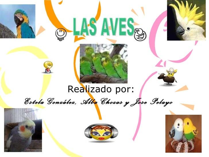 h  e Realizado por: Estela González, Alba Chozas y Jose Pelayo  LAS AVES