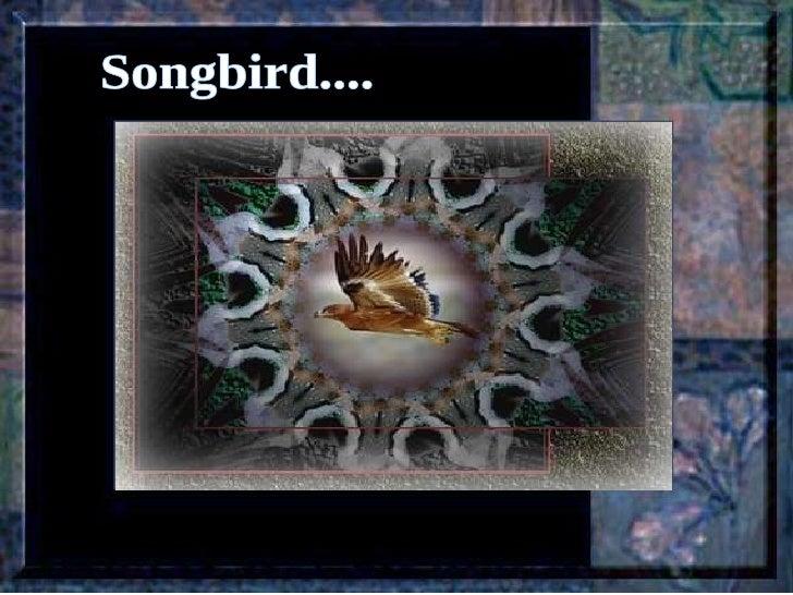 Leçon de PERSÉVERANCE Musique: Songbird – Barbra Streisand  Songbird....