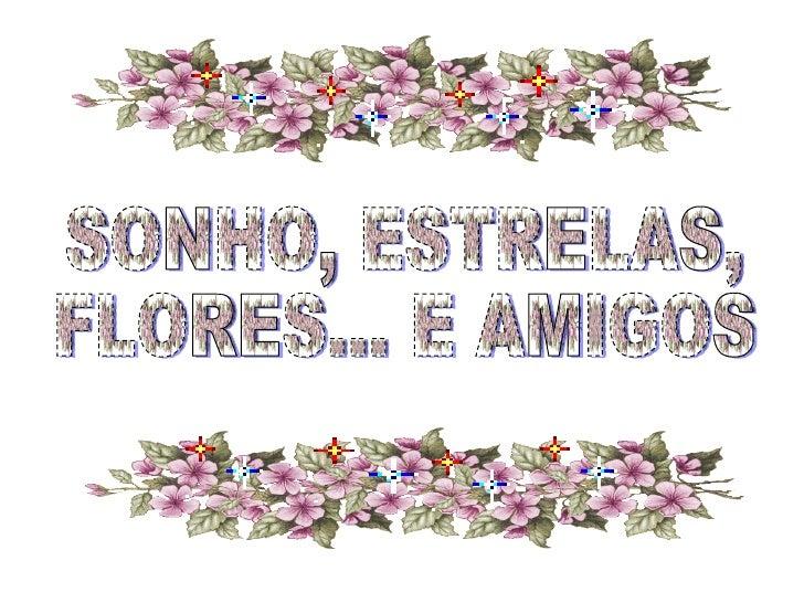 SONHO, ESTRELAS, FLORES... E AMIGOS