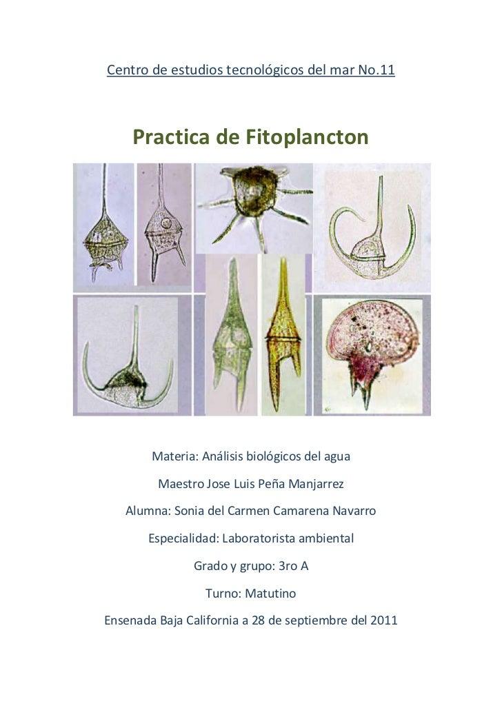 Centro de estudios tecnológicos del mar No.11     Practica de Fitoplancton        Materia: Análisis biológicos del agua   ...