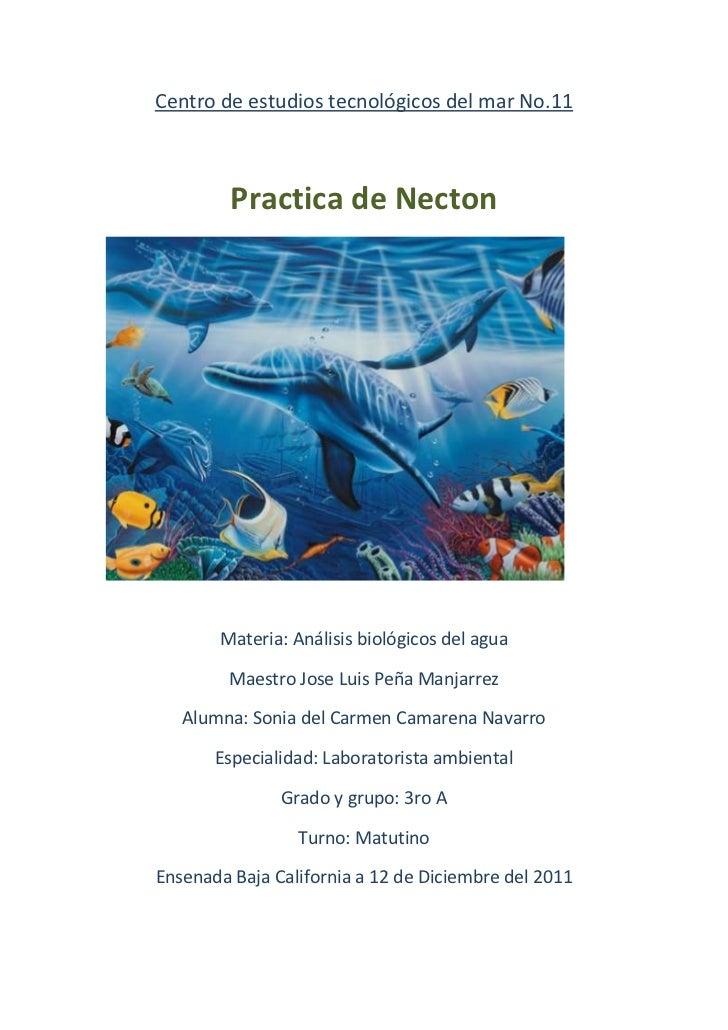 Centro de estudios tecnológicos del mar No.11         Practica de Necton       Materia: Análisis biológicos del agua      ...
