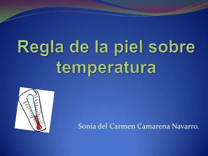 Sonia del Carmen Camarena Navarro.