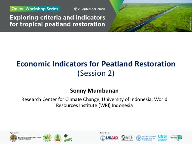 Economic Indicators for Peatland Restoration (Session 2) Sonny Mumbunan Research Center for Climate Change, University of ...
