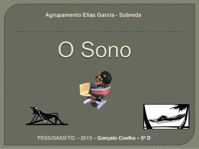 Agrupamento Elias Garcia - SobredaPESS/GASS/TIC – 2013 – Gonçalo Coelho – 5º D