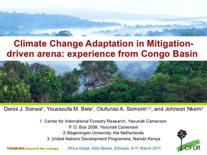 Climate Change Adaptation in Mitigation-driven arena: experience from Congo Basin  <ul><li>Denis J. Sonwa 1 , Youssoufa M....