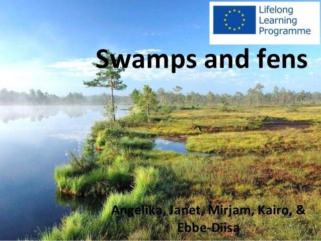 Sood ja rabad Angelika, Janet, Mirjam, Kairo, & Ebbe-Diisa Swamps and fens
