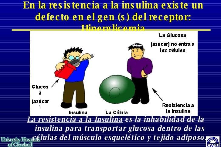 Armario Limpieza ~ Sop Y La Insulina