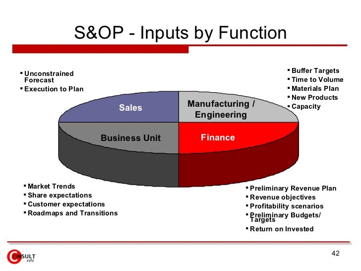 Program inputs for strategic business plan