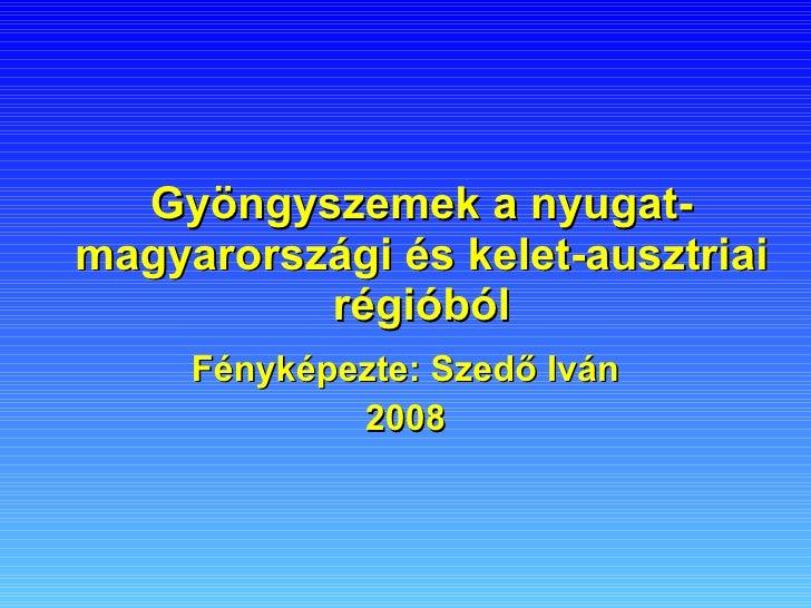 Gyöngyszemek a nyugat-magyarországi és kelet-ausztriai régióból Fényképezte: Szedő Iván 2008