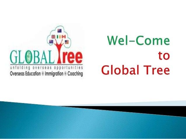 Global Tree providing Australia Spot Assessment .