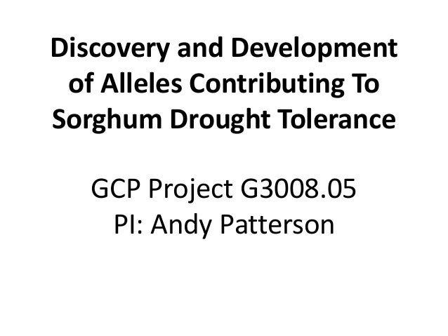 Discovery and Developmentof Alleles Contributing ToSorghum Drought ToleranceGCP Project G3008.05PI: Andy Patterson