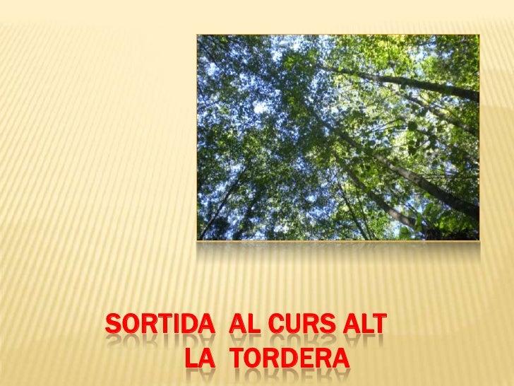SORTIDA  AL CURS ALT          LA  TORDERA<br />