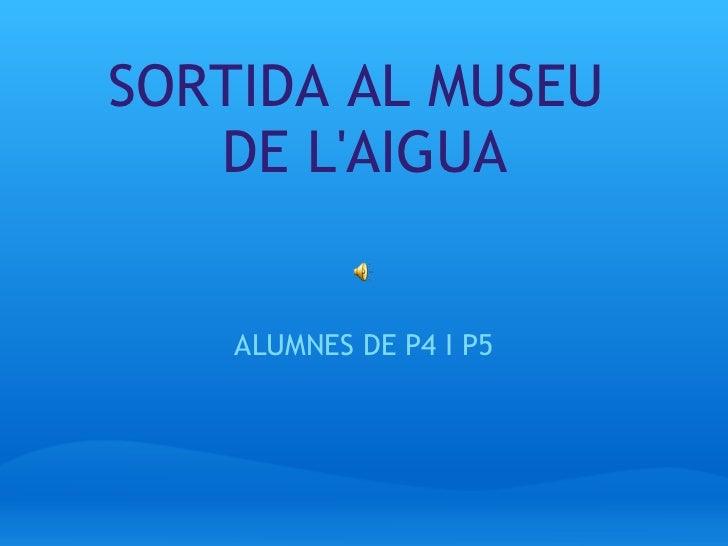 SORTIDA AL MUSEU DE L'AIGUA ALUMNES DE P4 I P5