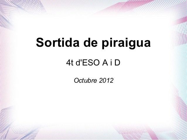 Sortida de piraigua     4t dESO A i D      Octubre 2012