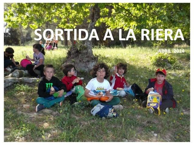 SORTIDA A LA RIERA ABRIL 2014