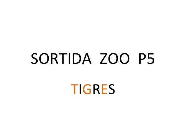 SORTIDA ZOO P5 TIGRES