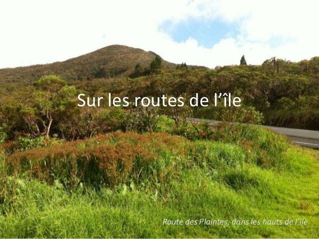 Sur les routes de l'île           Route des Plaintes, dans les hauts de l'île