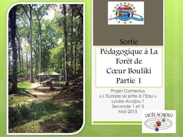 Sortie Pédagogique à La Forêt de Cœur Bouliki Partie 1 Projet Comenius « L'Europe se jette à l'Eau » Lycée Acajou 1 Second...