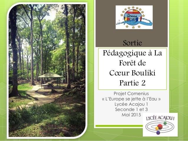 Sortie Pédagogique à La Forêt de Cœur Bouliki Partie 2 Projet Comenius « L'Europe se jette à l'Eau » Lycée Acajou 1 Second...
