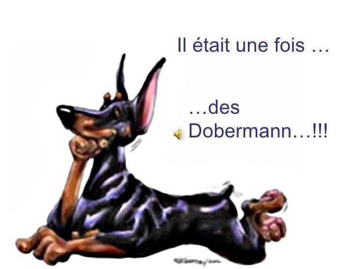 Il était une fois … … des Dobermann…!!!