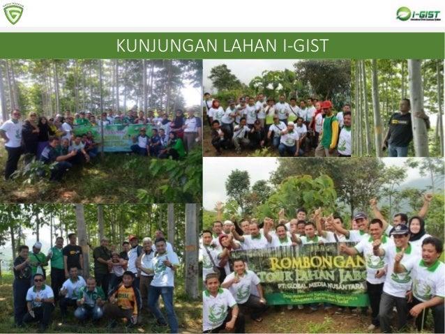 8 PERTIMBANGAN MEMBELI BIBIT POHON DARI I-GIST Pohon yang ditanam adalah Pohon jabon, yang RISIKO GAGALNYA MINIM2 Bagi has...