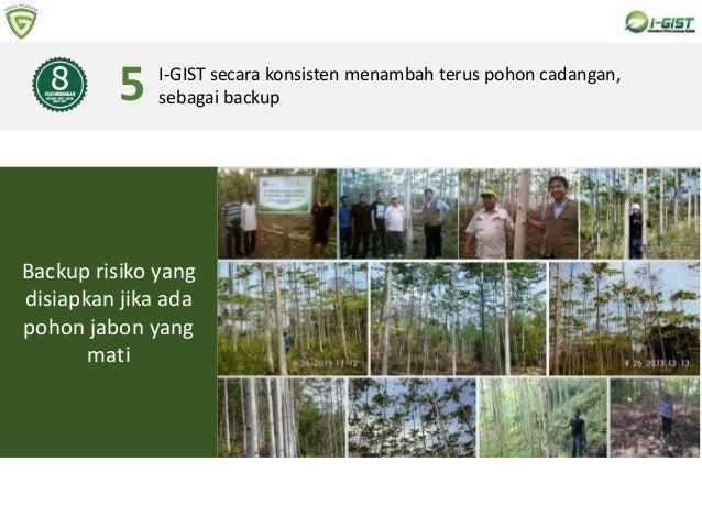 8 PERTIMBANGAN MEMBELI BIBIT POHON DARI I-GIST I-GIST secara konsisten menambah terus pohon cadangan, sebagai backup5 Back...